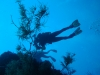 dykresa_red_sea_atlantis_dive_college_dykare_dykare_mot_ytan