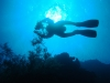 dykresa_red_sea_atlantis_dive_college_dykare_mot_ytan