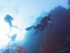 dykning-i-red-sea-med-atlantis-dive-college-st-johns-reef-5