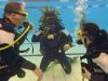 pool-med-atlantis-dive-college-i-rosenlundsbadet-dykutbildning-dykcertifikat-17