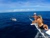 atlantis_dive_college_moalboal_malapascua_evolution_quovadis_2014_diving_philippines-1