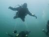 2014_06_08_diving_atlantisdivecollege_sweden_padi_dykcertifikat_dykcert-2