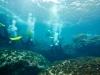 dykresa_till_malta-_med_atlantis_dive_college_2012_vrakdykning-7