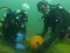pumpadyk_atlantis_dive_college_pumpkin_dive_dykning_dykare_undervattensbilder-54