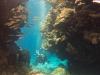 dykning-i-red-sea-med-atlantis-dive-college-st-johns-reef-21