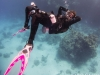 dykning-i-red-sea-med-atlantis-dive-college-st-johns-reef-37