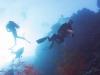dykning-i-red-sea-med-atlantis-dive-college-st-johns-reef-5