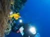 dykning-i-red-sea-med-atlantis-dive-college-st-johns-reef-8