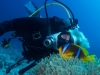 reasea_diving_brotherisland_atlantisdivecollege_atlantis_dive_college_padi_-4