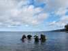 dykning-dykcert-och-dykutbildning-med-atlantis-dive-college-i-jonkoping-dykcert-1-2
